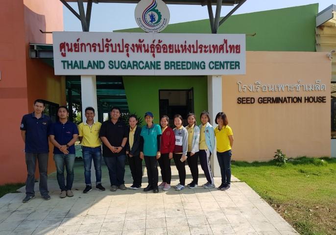 เมื่อวันที่ 14 มกราคม 2562 ที่ผ่าน  โรงงานน้ำตาลอุตสหกรรมอู่ทอง เข้าศึกษาดูงานวิจัยและพัฒนาพันธุ์อ้อย  ณ ศูนย์การปรับปรุงพันธุ์อ้อยแห่งประเทศไทย