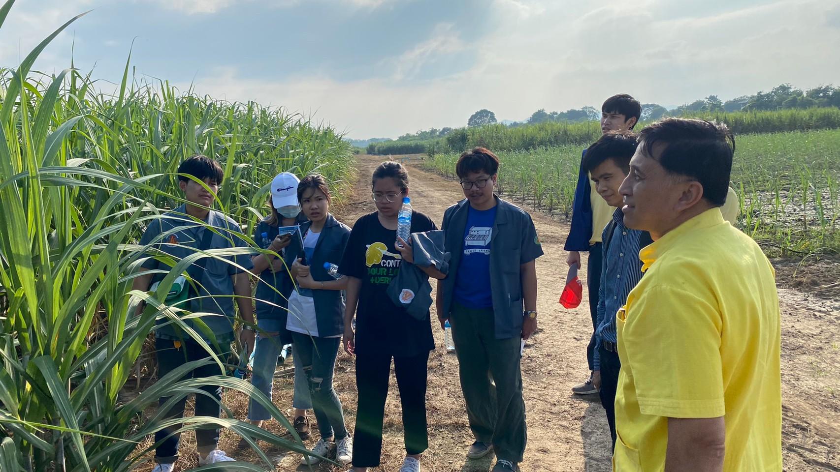 เมื่อวันที่ 10 พฤศจิกายน 2563 คณะวิทยาศาสตร์ และเทคโนโลยี มหาวิทยาลัย ธรรมศาสตร์ ศูนย์รังสิต เข้าเยี่ยมชม และศึกษาดูงาน ณ ศูยน์การปรับปรุงพันธุ์อ้อยแห่งประเทศไทย (Thailand Sugarcane Breeding Center)