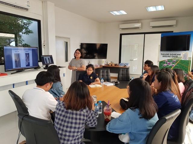 ระหว่างวันที่  10-25 กุมภาพันธ์ 2562 ที่ผ่านมา   ที่ปรึกษาโครงการฯ ได้ดำเนินการศึกษาวิจัยและทดสอบความต้านทานเชื้อโรคเหี่ยวเน่าแดง